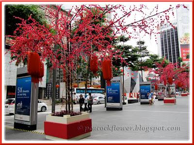 CNY 2011 decorations alongside the Pavilion Shopping Mall, Kuala Lumpur
