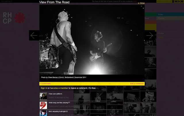 *色彩變化豐富的搖滾樂團網站 Red Hot Chili Peppers Web Site 6