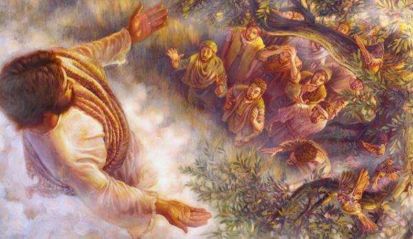 Puntos Sobresalientes de la Lectura de la Biblia: Hechos de Apóstoles
