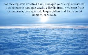 Juan 15.16