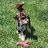 Deborah Howard avatar image