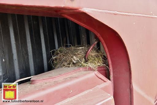 De Peelhistorie herleeft Westerbeek dag 2 05-08-2012 (48).JPG