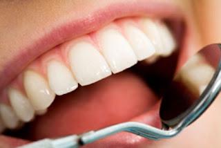 odontologia - Especialidades