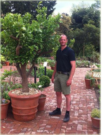 Large Florentine Planters
