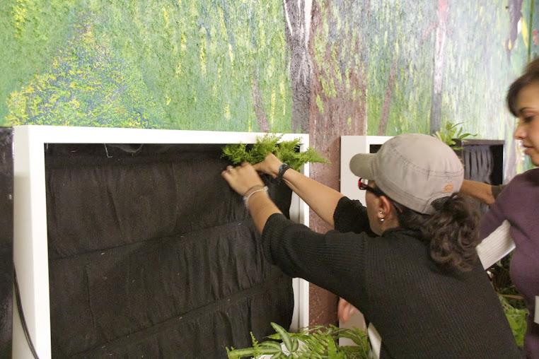 Curso de jardines verticales México