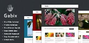 Gabix Free Premium Wordpress Theme