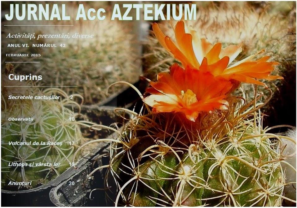 jurnal cactus