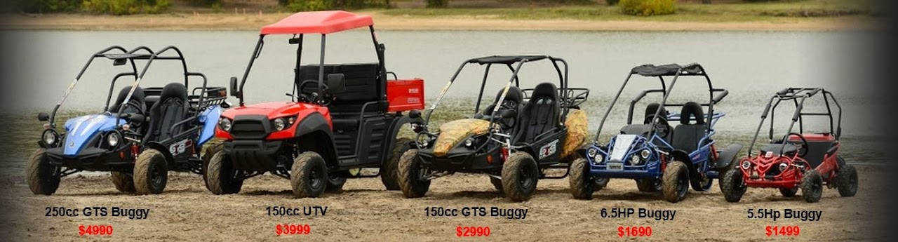 250cc 150cc 6.5hp 5.5hp Twister Hammerhead Dune Buggy Comparison