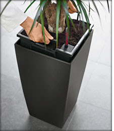 Self-watering Lechuza Cubico Planters