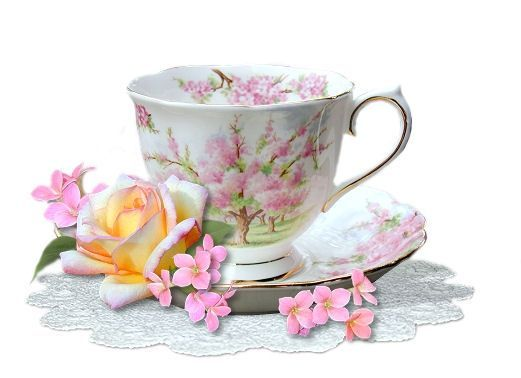 teacup.jpg?gl=DK