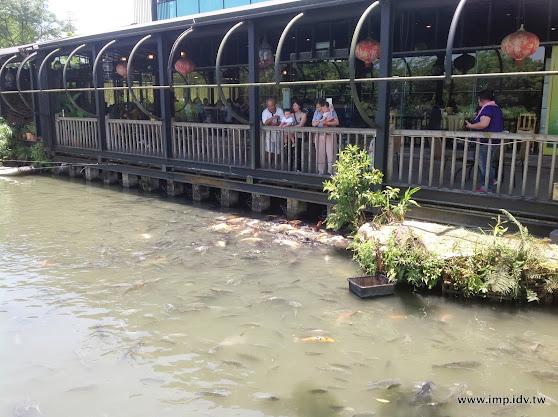 宜蘭 八甲魚場