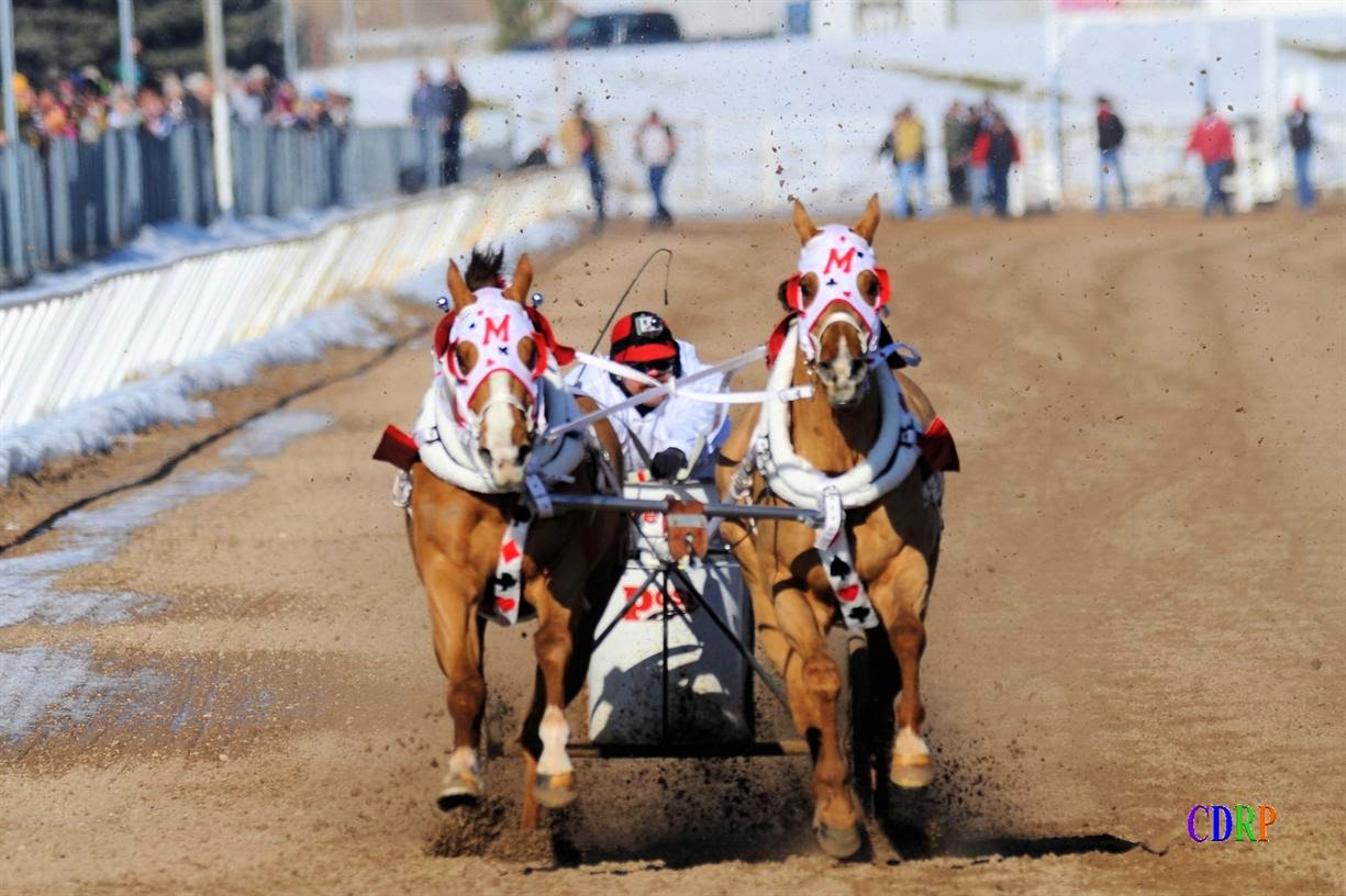 World Chariot Racing Championships