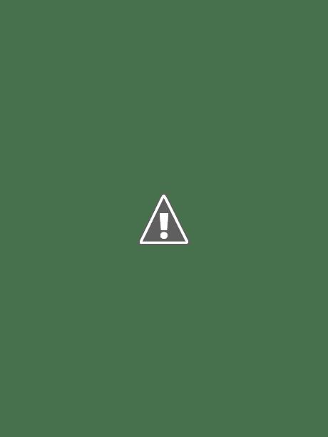 Expert S Tip Pruning Apple Trees Master Gardener Program