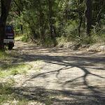 Cullamine Rd near Terrey Hills (27251)