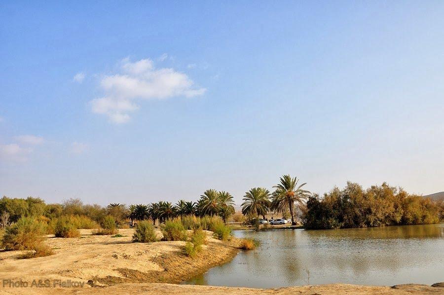Оазис в пустыне Негев, озеро Йерухам.