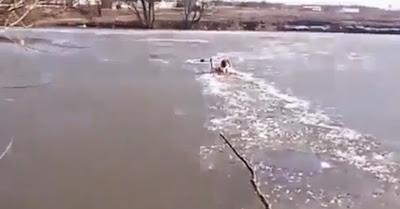 Homem atravessa rio gelado para salvar cão