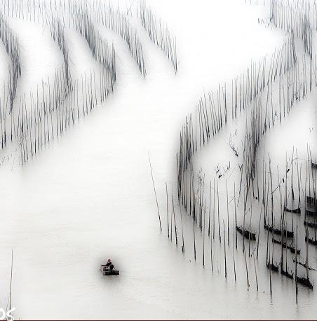 Min Yu Photo 24