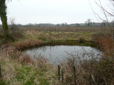Just one of the numerous ponds that can be seen along the route
