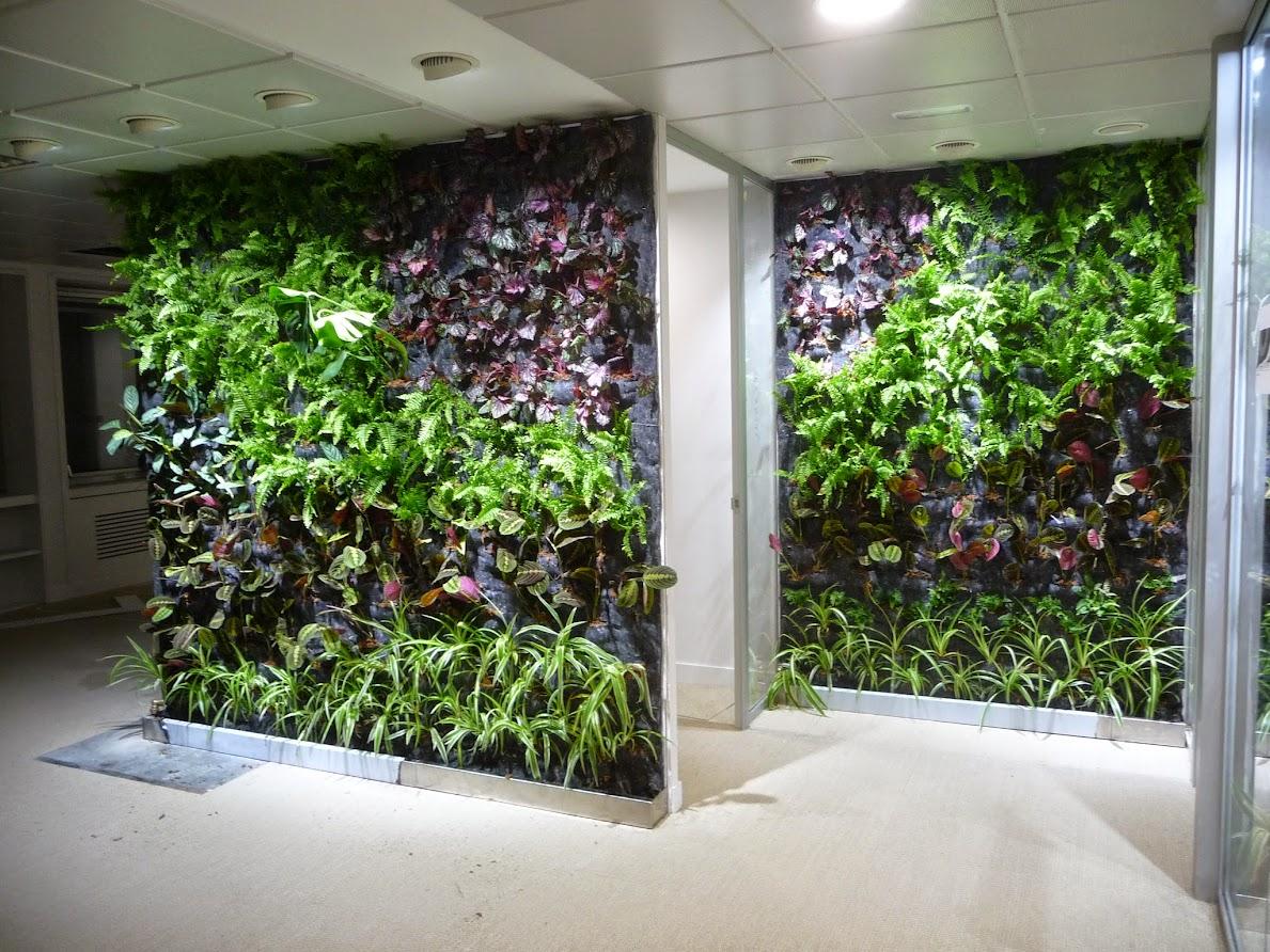 Jardines verticales de interior f p en madrid Jardines verticales para patios pequenos