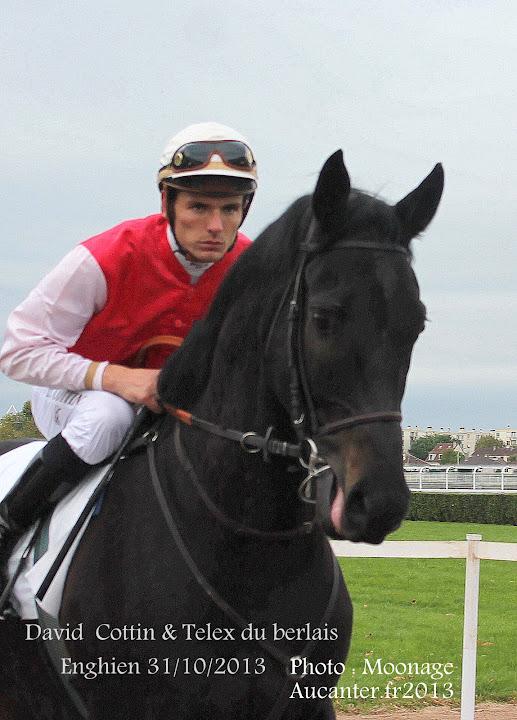 Jockeys' attitudes IMG_0101