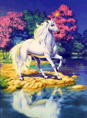 unicorn%252520%25252848%252529.jpg