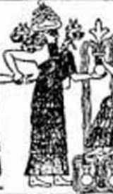 Horned Dandelion Alraun Image