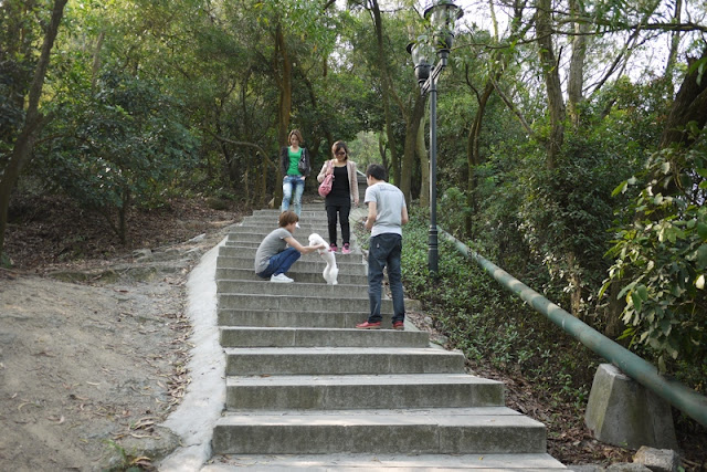 People with a dog on the stairs up a hill at Jingshan Park in Zhuhai, China