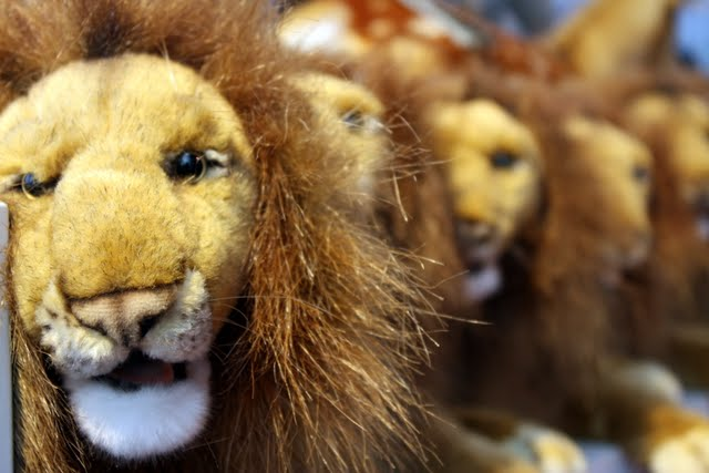 Toy lions at FAO Schwartz in New York City