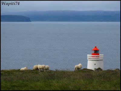 Un tour  d'Islande, au pays du feu... et des eaux. 18-Vatnses