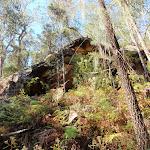 Simpson Cave (221618)
