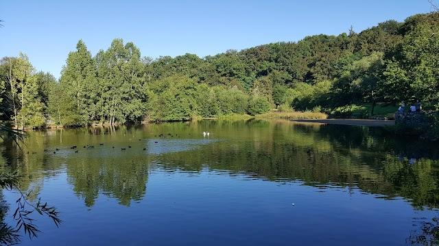Parc de L'Aurence