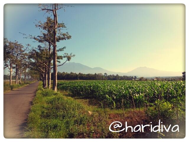 Kaki Gunung Raung
