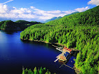 Sprachaufenthalt Kanada - King Pacific Lodge — British Columbia