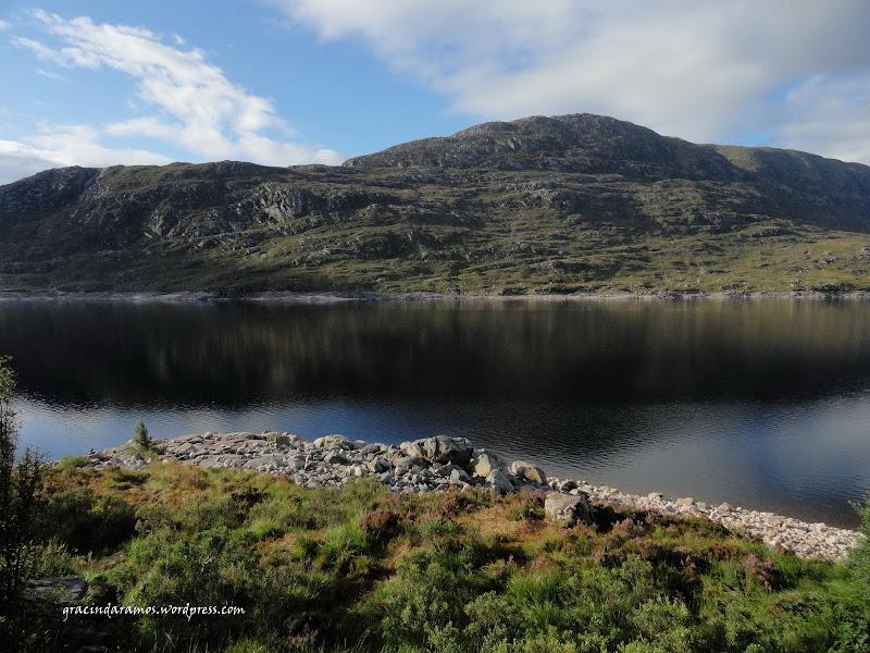 - Passeando até à Escócia! - Página 15 DSC04009