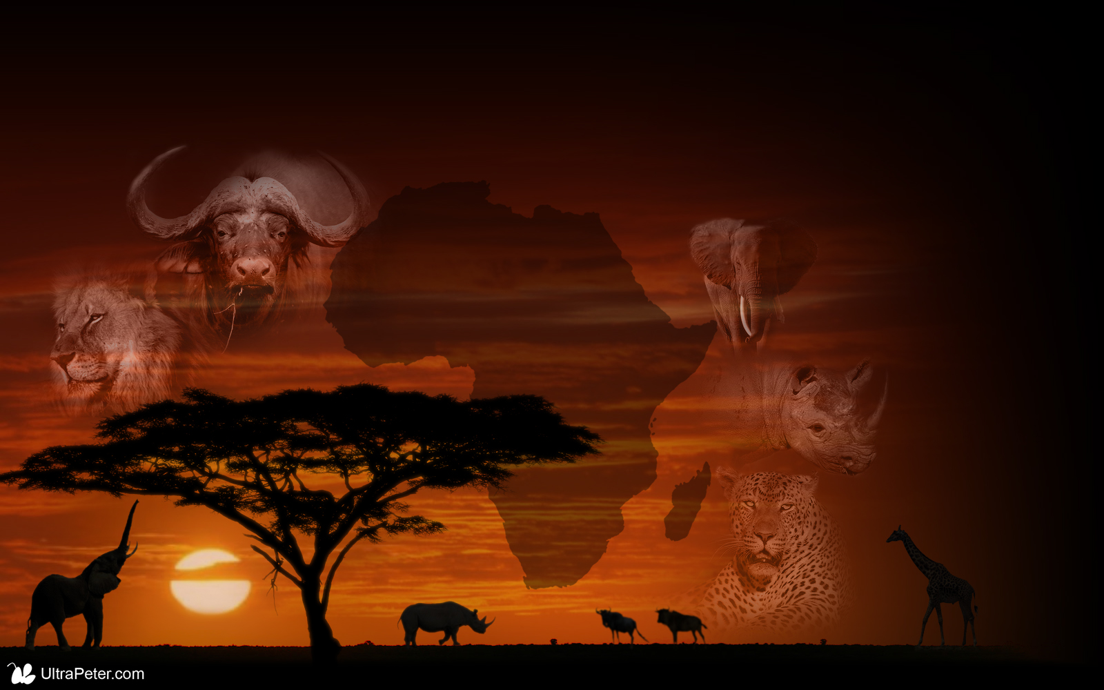 africa map desktop wallpaper