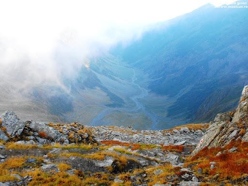 Valea Viştei - măcar ştiu cum arată jumătatea ei inferioară