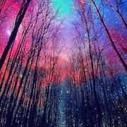 Сон заниматься сексом в лесу