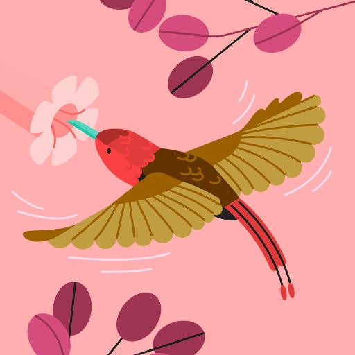 Judith Bradshaw