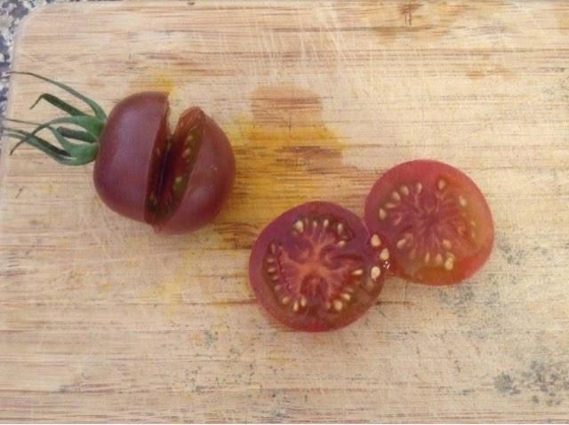 le blog comment r colter et conserver les graines des tomates. Black Bedroom Furniture Sets. Home Design Ideas