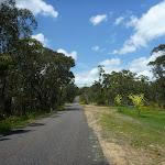 Walking along Forest Road (367979)