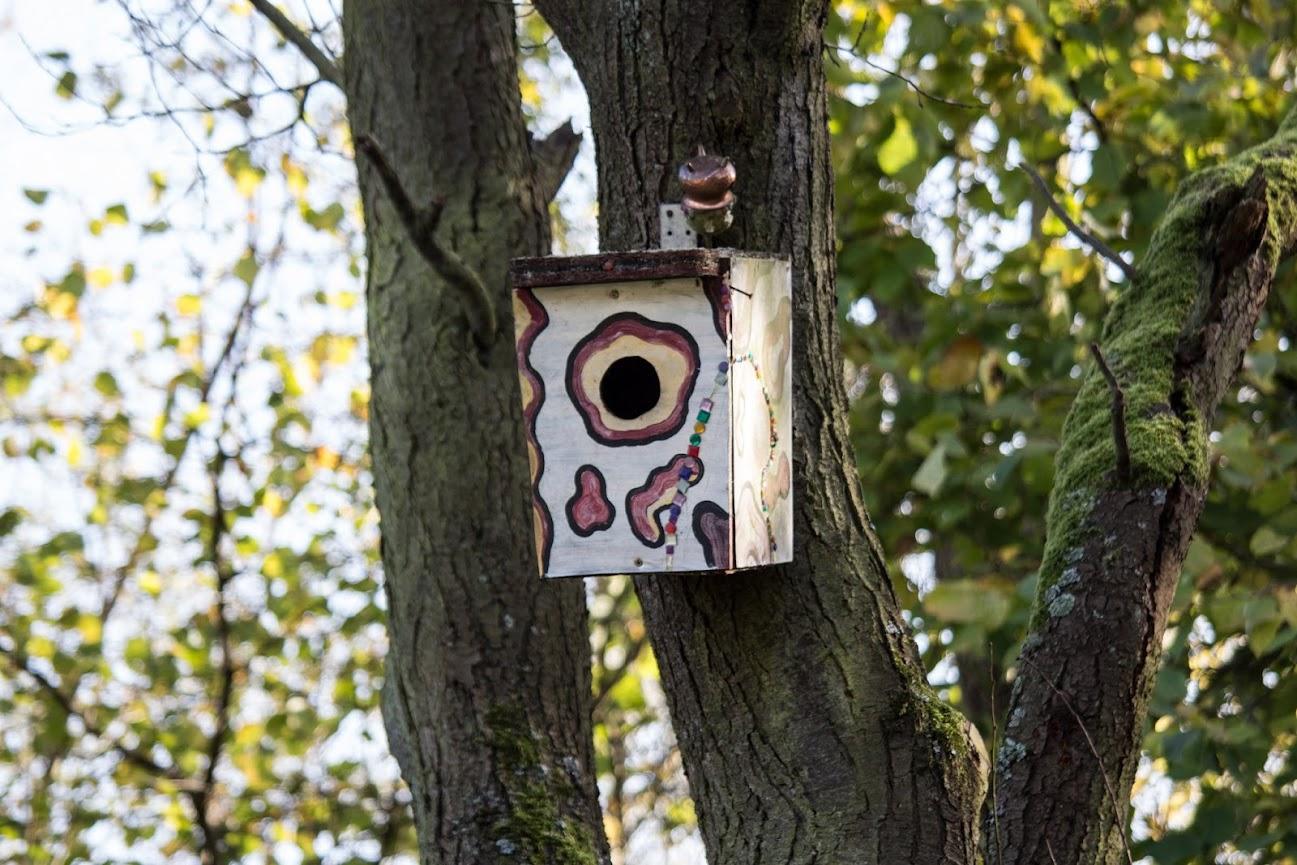 Ein anderes Vogelhaus