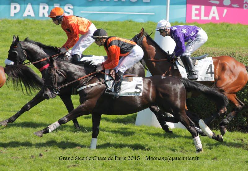 Photos Auteuil 17-05-2015 Journée du Grand Steeple IMG_0198