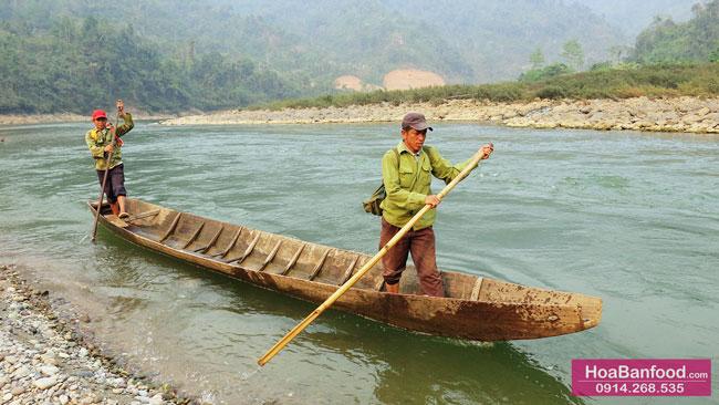 Khai thác Mật Ong Rừng ở Lai Châu - 2
