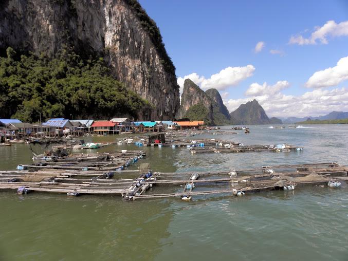 https://lh6.googleusercontent.com/-v8jrDfptoRk/Up0I5EJiauI/AAAAAAAAEOc/89SYhOvf7ks/w677-h508-no/Tajlandia+2013+620.JPG