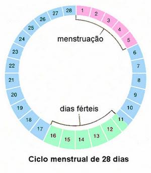 tabelinha periodo fertil