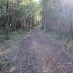 Kingtree Ridge road (58715)