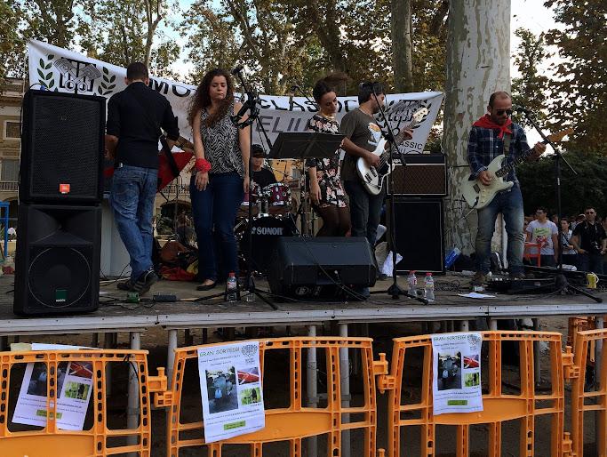 Expo Clàssic 2014 Sant Feliu Llobregat (12/10) IMG_2777