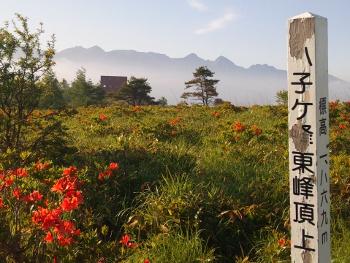 八子ヶ峰東峰頂上