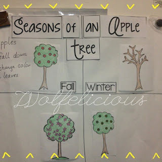 Photo of Season Anchor Chart Wolfelicious