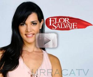Flor Salvaje Capitulos | Novelas